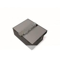 BFAB5024 NICE BIG-FAB Irreversibile 24 Vdc con encoder magnetico e finecorsa meccanico in chiusura